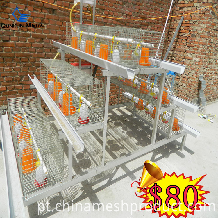 broiler cage9