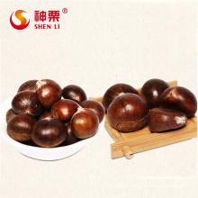 Organic Fresh Chestnuts Castanea Sativa Whole Chestnut for sale