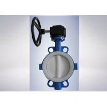 Strong Acid Cast Iron Butterfly Valve
