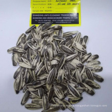 Manufacturer Supply High Quality Sunflower seeds 601 & 363 Mixed Sale