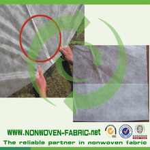 PP Spunbond Non Woven for Agriculture