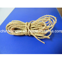 3 Ply High Tenacity Agriculture Packing Rope/Polypropylen Twine (SGS)