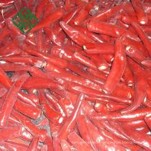 Chine ail congelé et en vrac haricots verts congelés légumes surgelés