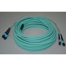 Cabo de ligação MTP Fiber Patchcord 12 Core MTP