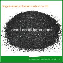 Charbon actif granulaire Nutshell pour le traitement de l'eau