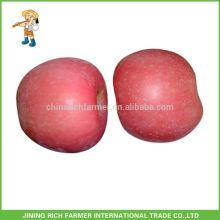 Konventionelle Formen Chinesische frische Apfel Grade A Red Delicious Fuji Apple