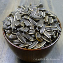 Full and Big 363 type Sunflower seeds of Inner Mongolia