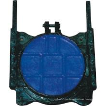 Puerta redonda de hierro fundido de la válvula