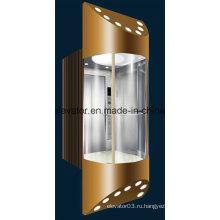 Полный коллективный избирательный панорамный лифт (JQ-A001)