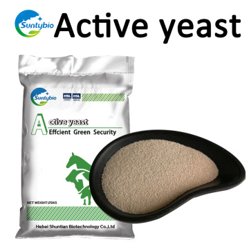 Suntybio 10Billion 20Billion Dry Yeast para alimentación animal