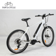 Bicicleta de montanha elétrica da suspensão de 36V 250W com o chinês meados de do motor do bafang 8fun