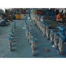 2/3/4/6/8/10/12 Inch Pn16 Stainless Steel Flange Gate Valve Supplier