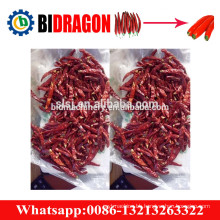 Hot sale chili stem cutting machine red chili stem cutter