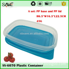 Wholesale 2PK 1000ML big shallow eco friendly plastic japanese food packaging box