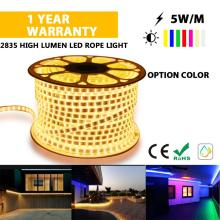 Hot sale LED strip light  holiday light