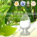 Venta caliente Extracto de Garcinia Cambogia / ácido hidroxicítrico Hca 50%
