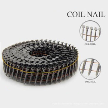 All Size Good Coil Nail From China