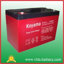 Batterie profonde d'AGM de cycle de 12V 100ah pour solaire / UPS