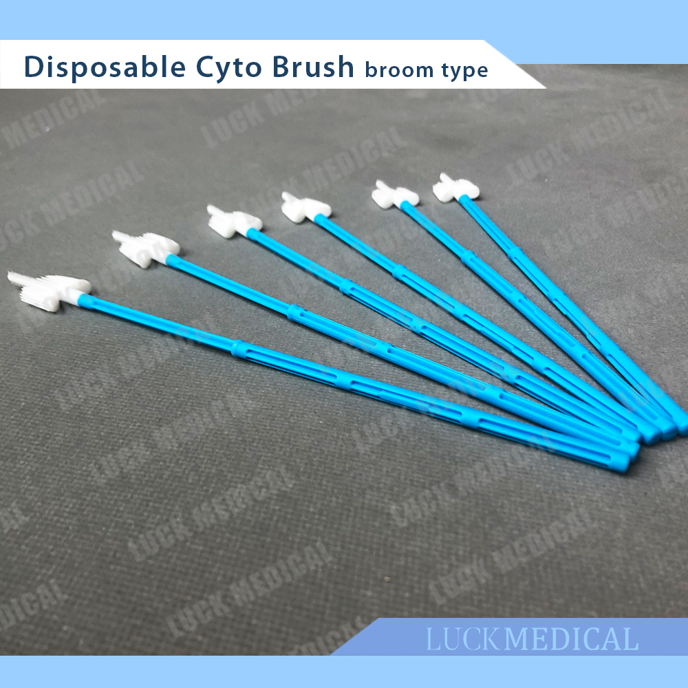 Main Picture Cyto Brush Broom05