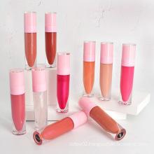 Factory Wholsale Makeup Your Own Lipstick  Pink Lip Gloss Tubes Vendor Private Label Long Lasting Lip Glaze