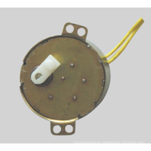 Synchronous Motor (49TDY -A)