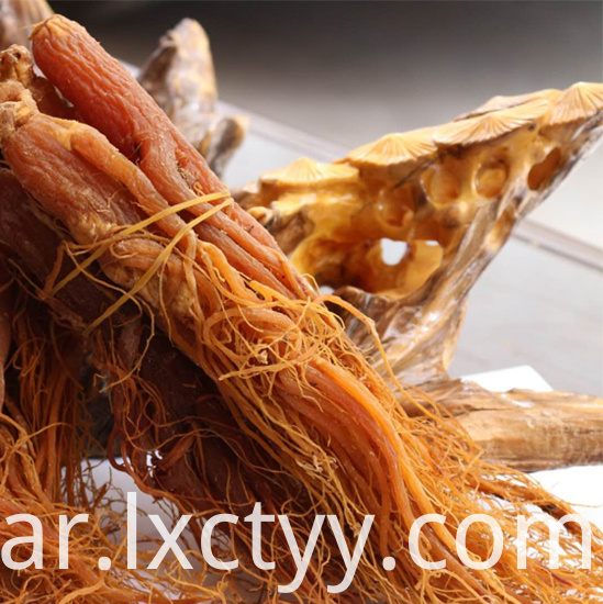 red ginseng extract tea