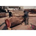 Vente chaude verticale bois Slasher avec bas prix