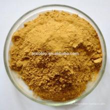 Ernährung Zutaten Lebensmittelqualität Prunella Vulgaris Extrakt