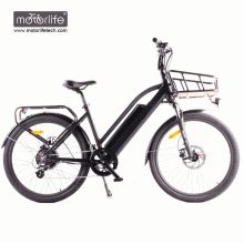 BAFANG mid drive electric bike 36v350w city electric bicycle,best e bike