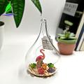 Glass Terrarium Container Geometric Glass Terrarium