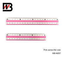 PS Stationery Ruler for Office Supply and School