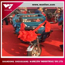 500W China Cargo Elektro-Dreirad für Erwachsene
