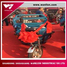 Triciclo elétrico da carga de 500W China para adultos