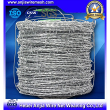 Galvanized Barbed Wire for Security