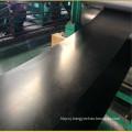 Straight warp conveyor belt (SW belt)