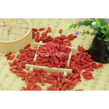 Dried+Goji+Berry+Export+with+Cheap+Price