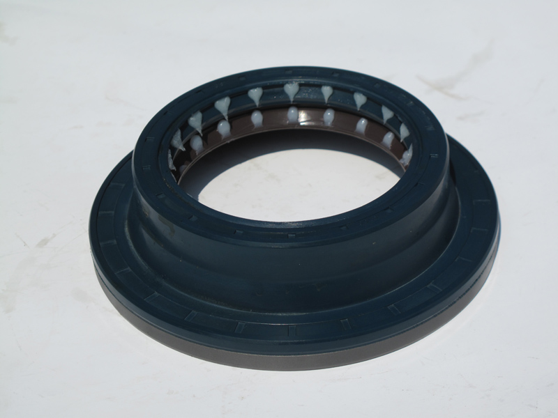 Benz Oil Seal