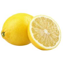 Manufacture Chinese Wholesale Fresh Citrus Fruit High Nutrition Yellow Lemon