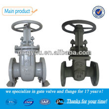 DN50 ductile iron light and heavy weight gate valve