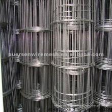 Malla de alambre soldada de hierro negro de cartón bajo para grapar clavo