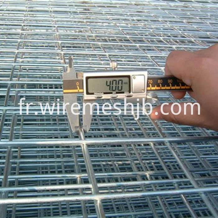 Electro Galvanized Weld Wire Panel