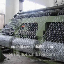 anping Hexagonal Wire Mesh factory