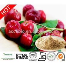 Bulk Supply Acerola Cherry Fruit Extract Powder/Acerola Cherry P.E 17%,25% 98% Vitamin C