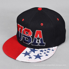 Fashion Mens Stylish Print Brim 3D Embroidery Snapback Cap