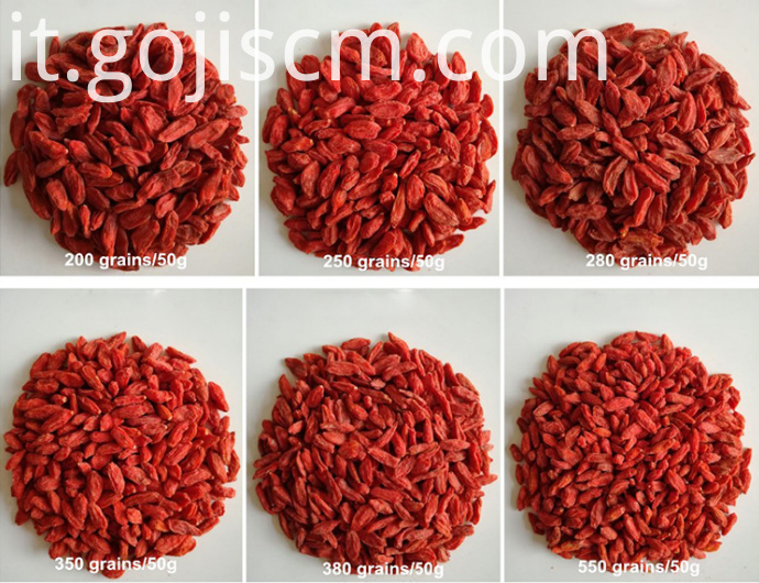 2017 NEW GOJI BERRY sizes