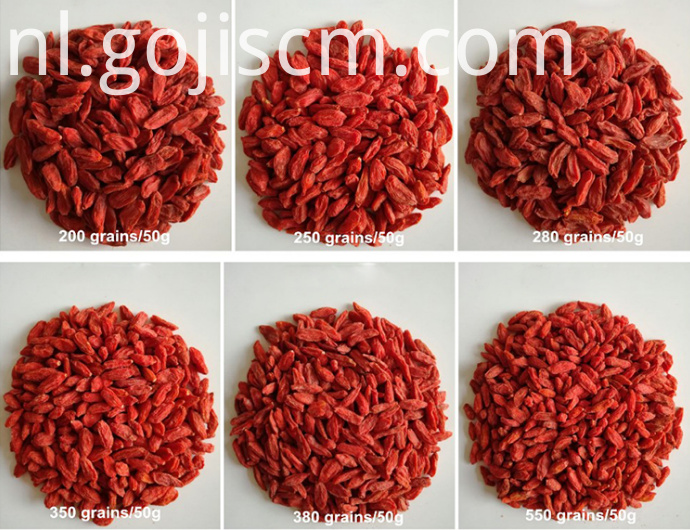 Dark Red Goji Berries sizes