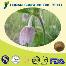 Extracto de Chinensis de Radix Pulsatillae Extracto de raíz de anémona Curado de problemas intestinales de animales