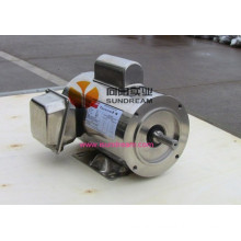 Stainless Steel 3 Phase Motor