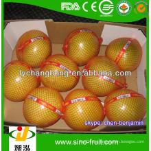 Frische Quitte Obst Mandarine Orange zum Verkauf