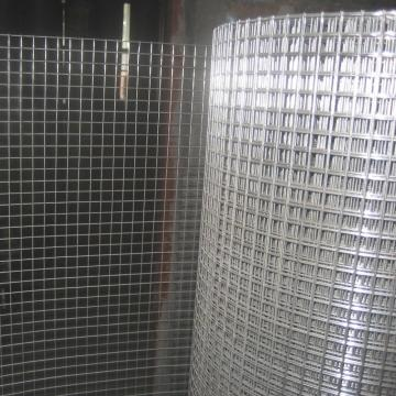 Mesh Chicken Galvanized Welded Mesh